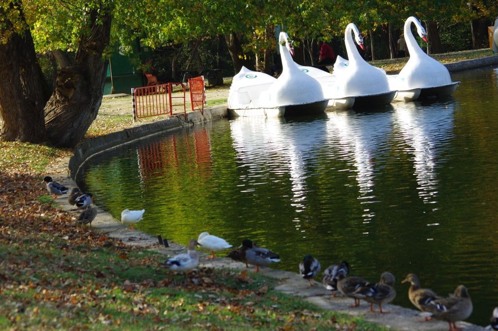Хотел ПАРК Бачиново Паркът през лятото
