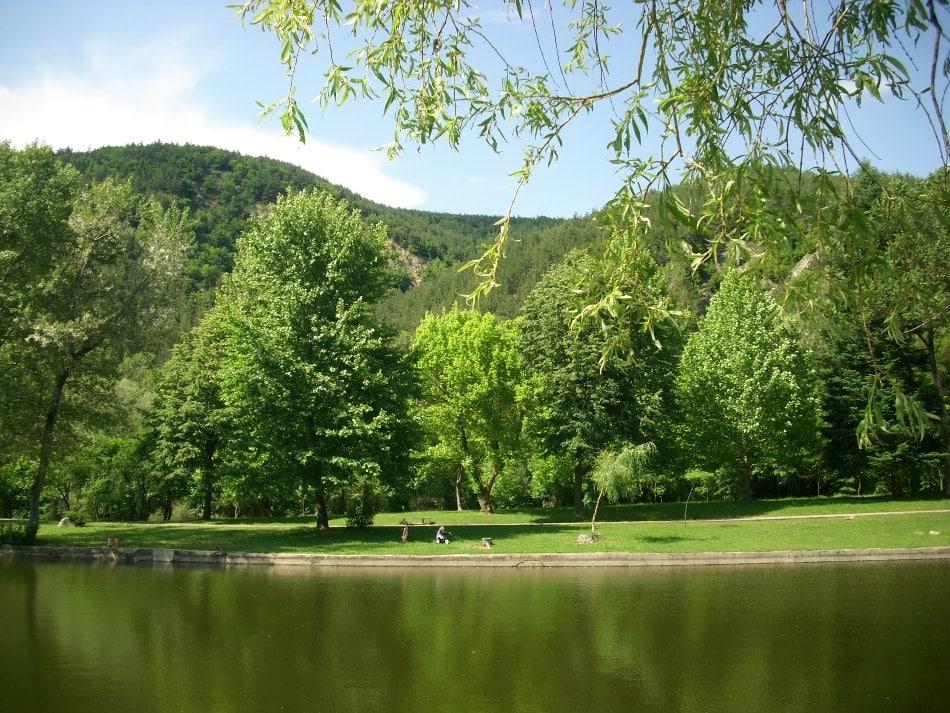 Хотел ПАРК Бачиново Релакс в паркът