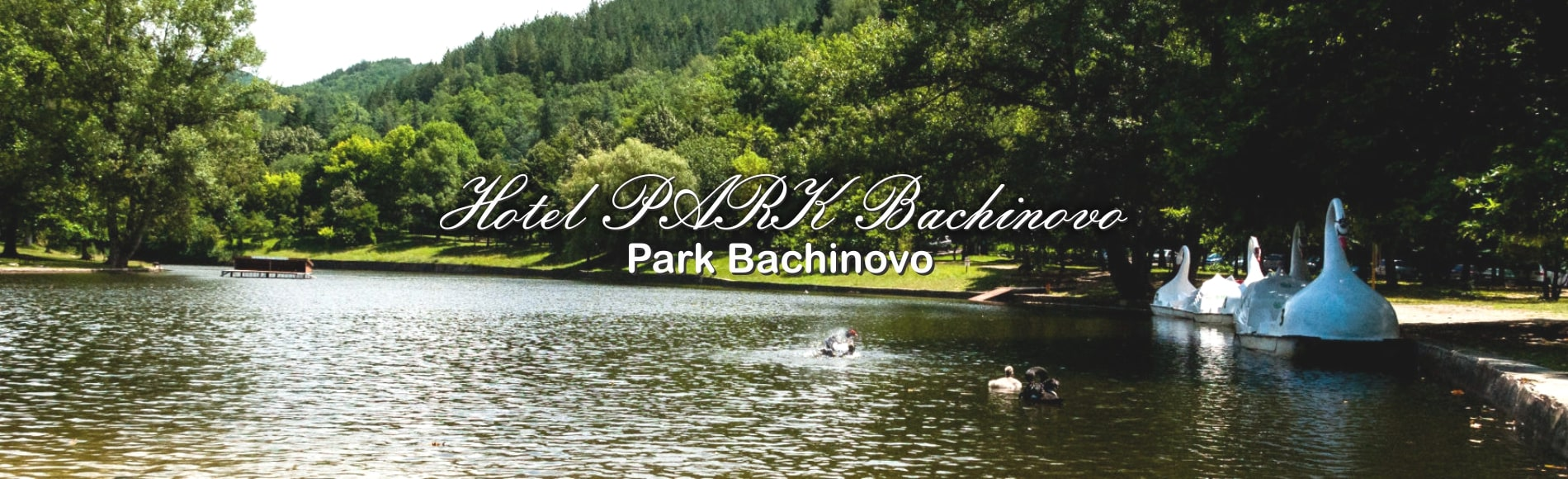 Хотел ПАРК Бачиново Паркът